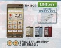 BASIO301.jpg
