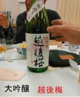 echigoume02.jpg