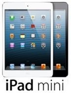 iPadmini03.jpg