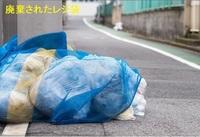 regibukuro02.jpg